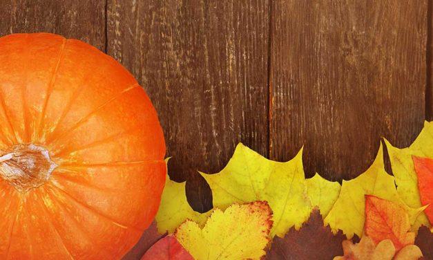 8 film da vedere (e rivedere) ad Halloween